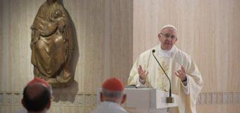 البابا فرنسيس يحث المؤمن المسيحي على أن يكون ملحا للأرض ونورا للعالم