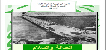 اللجنة المصرية للعدالة والسلام العدد 42