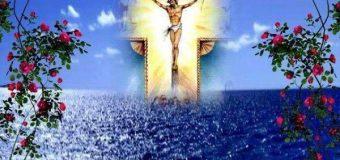 رسالة الصلاة لشهر فبراير فِي كُلِّ يَوْمٍ أُبَارِكُكَ